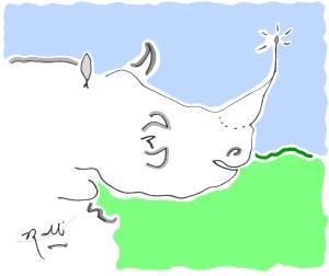 rhino(c)